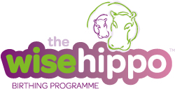 The -wise -hippo -wide -logo -250x 126
